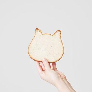 貓咪吐司.jpg