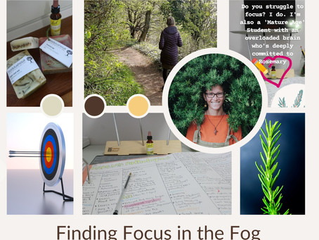 Finding focus in the fog