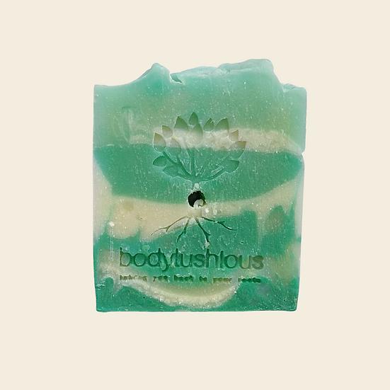 Tip Top Mint Shampoo Bar