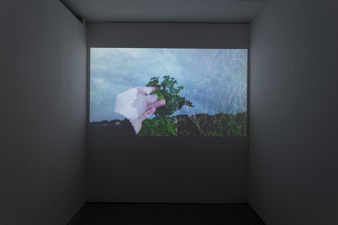 As Water (2020), video (6 min 04 sec). Image courtesy Jules Lister