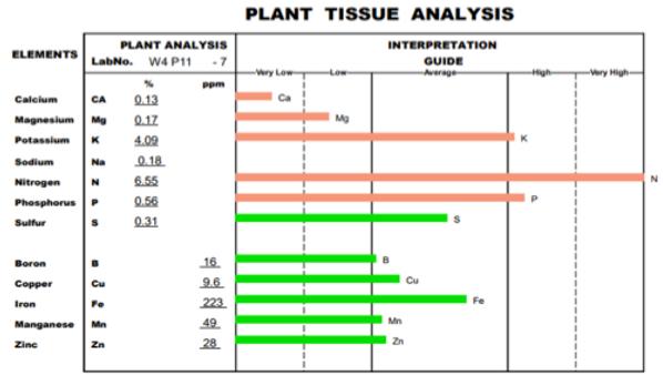 tissue wheat grass kyminasi.png