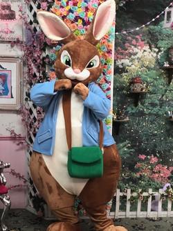 Peter Bunny