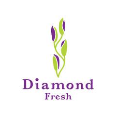 Diamond Fresh logo c.jpg