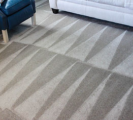carpet pic1.jpg
