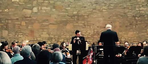 """""""Raum Für Talente"""" Festival - Sachsen Anhalt - Mitteldeutsche Kammerphilharmonie"""