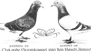 L'histoire de Huyskens van Riel (2)