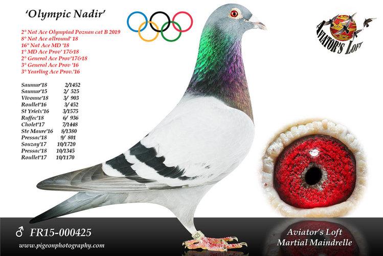 Olympic Nadir.jpg