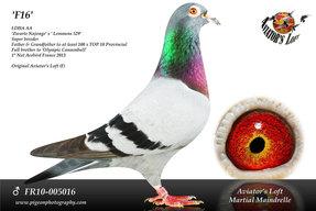 FR10-005016_main.jpg