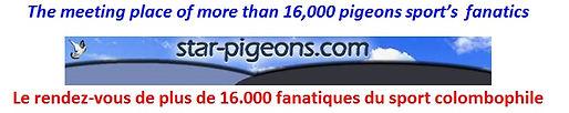 Star Pigeons.com