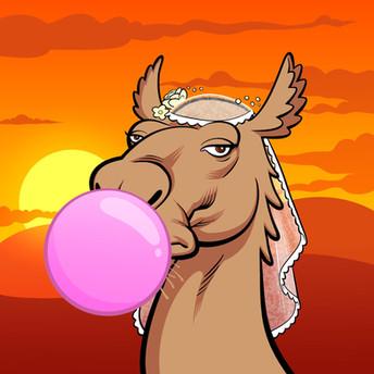 ARABIAN CAMEL #9883