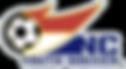 ncysa logo.png