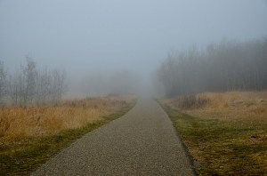 The Disappearing Path