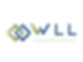 Wll Engenharia Logo .png