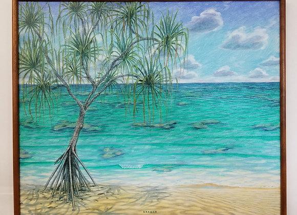 """Hala Tree"""