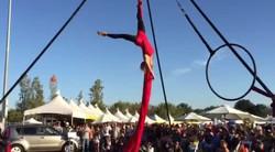 Irvine Global Festival 2016