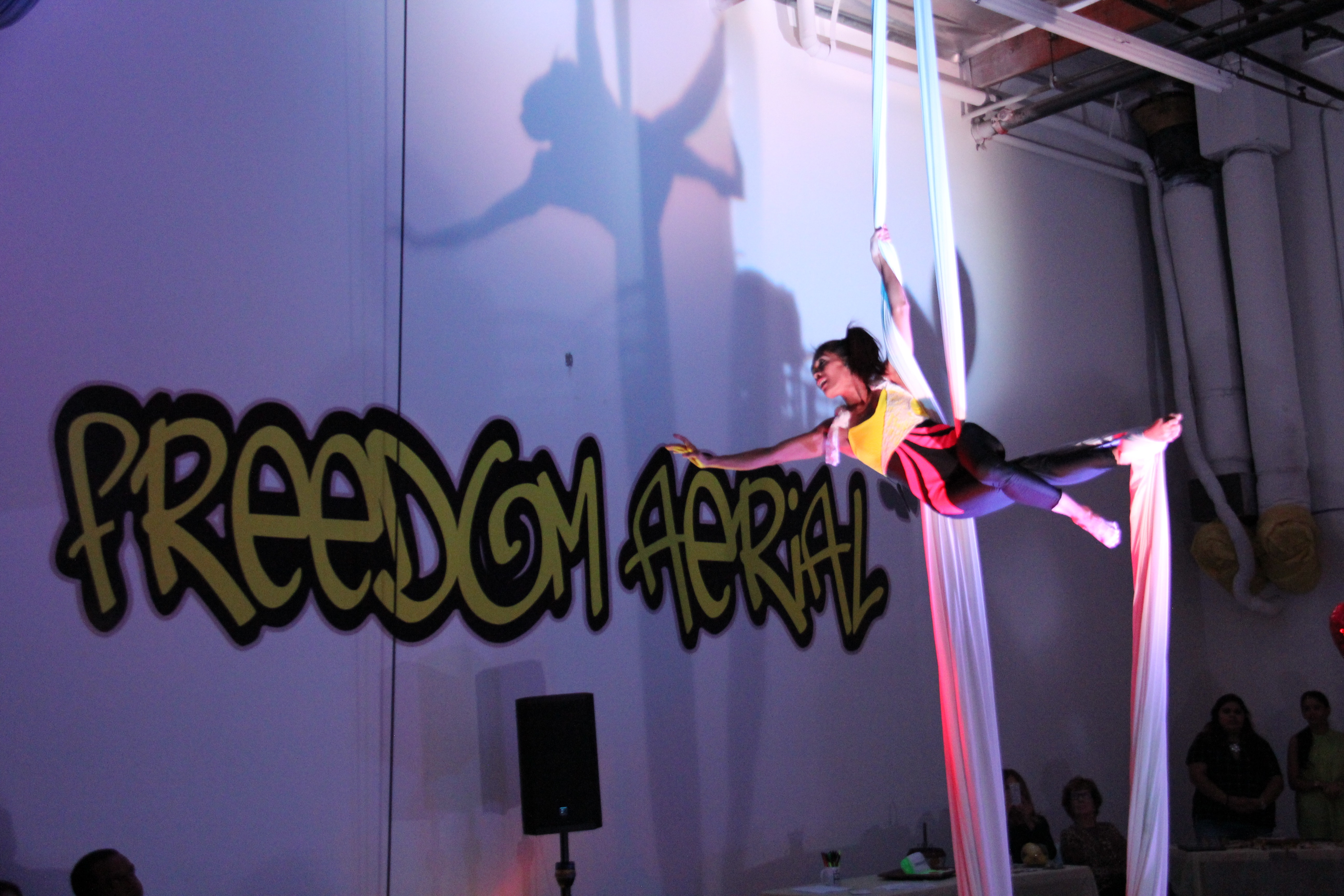 Freedom Aerial Grand Opening