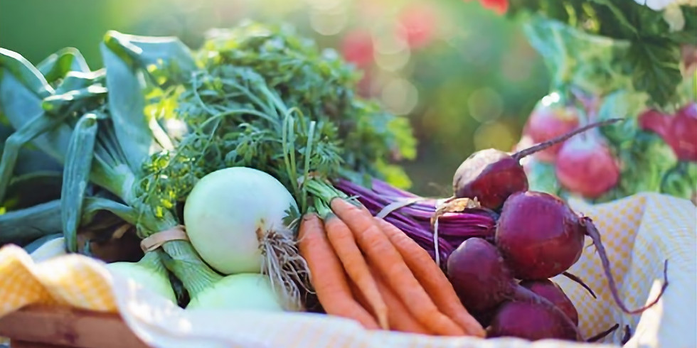 Harvest Potluck