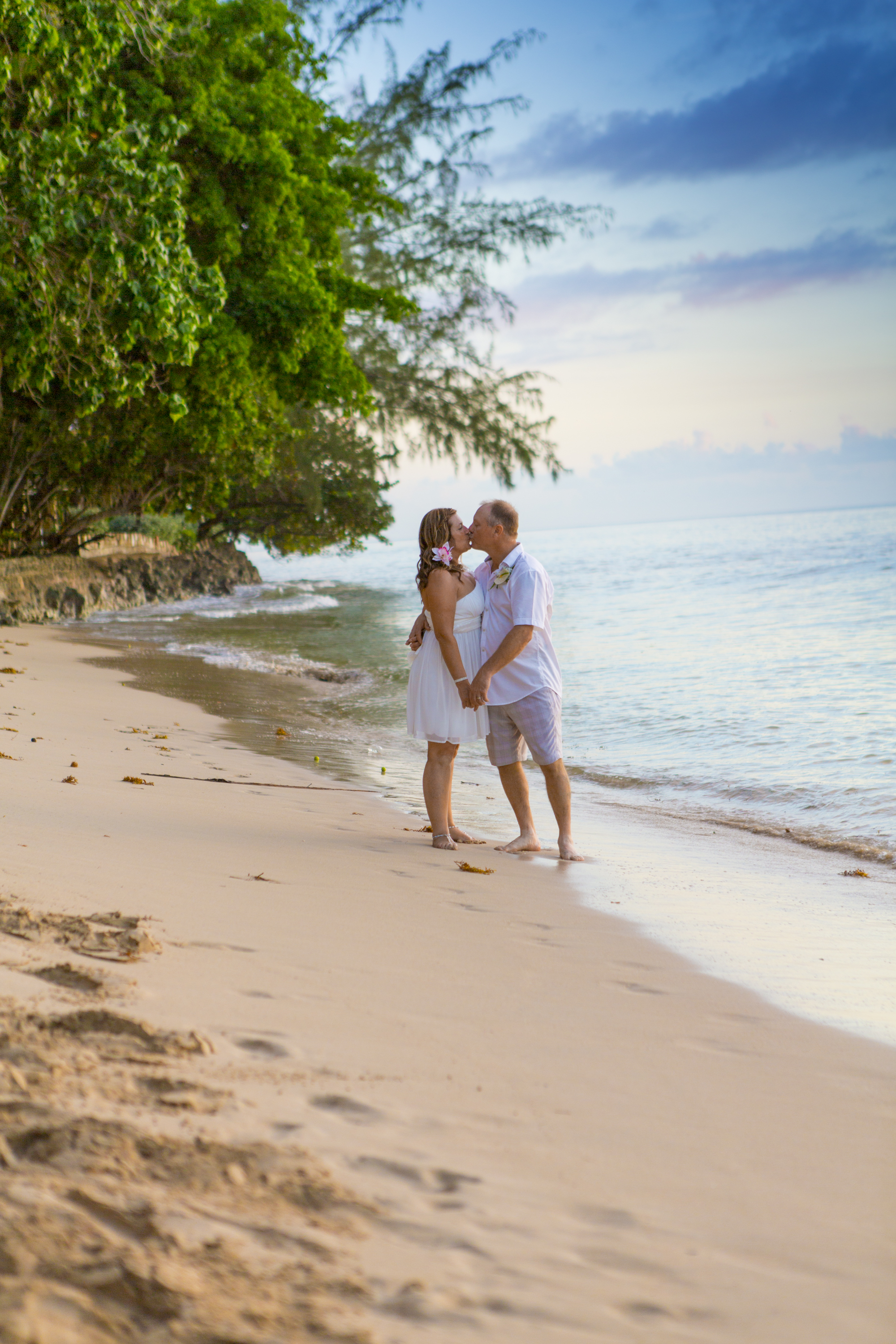 barbados weddings artathomp