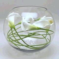 fish-bowl-vase-rentals-ca-where-to-rent-