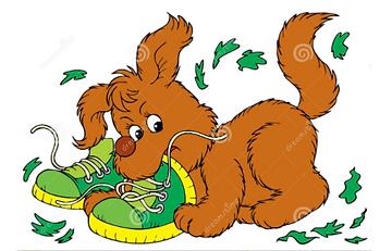 busig hund.PNG