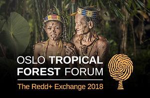 oslo-tropical-forest-forum-760x500.jpg