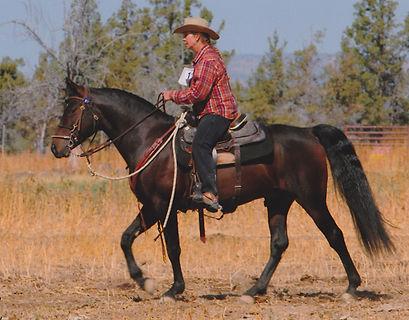 CowboyTrailET9-09e.jpg