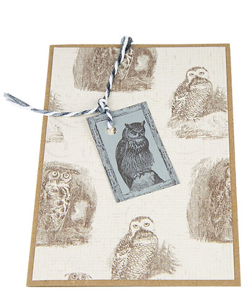 Silver Owl Card - Owl Sketch