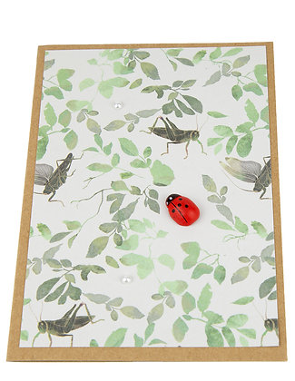 Ladybug Collection Card - Grasshoppers