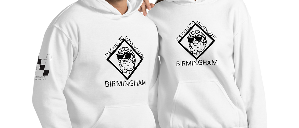 It's Chill To Have You In Birmingham Unisex Hoodie