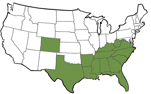 fill-in-map-of-us-stylish-design-united-