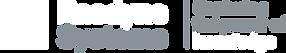 Raedyne Systems Logo