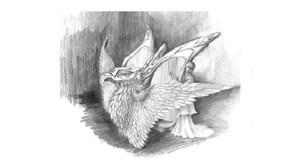 The Cirayla (Harp)