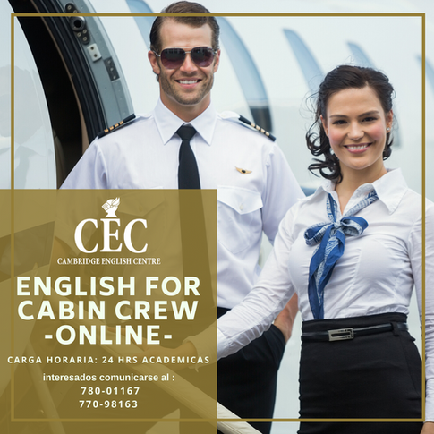 English for Cabin Crew ONLINE