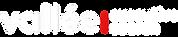 vallee logo.png