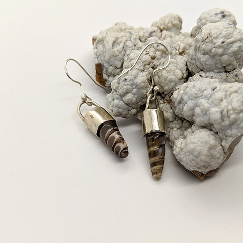 Wyoming Turritella Earrings
