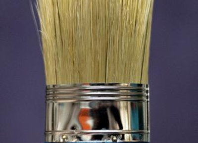 Oval Brush for Chalk Paint