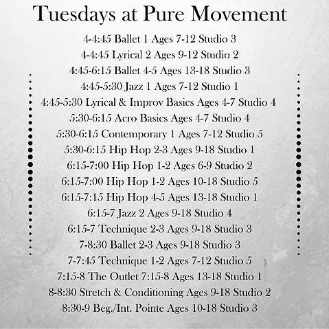 Daily Schedule at Pure Movement  (16).pn