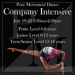 Company Intensive (1).png