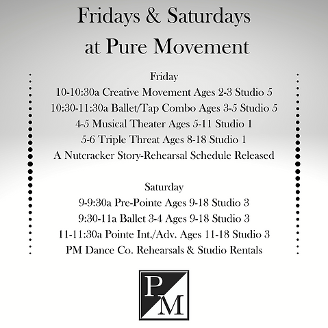 Daily Schedule at Pure Movement  (22).pn