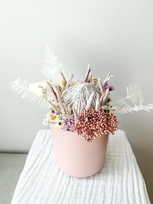 Pastel Protea