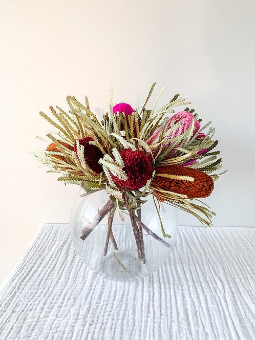 Banksia stem