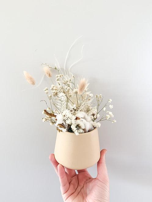 Mini Pot Neutral