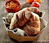 Maxi Croissant Apricot.jpg