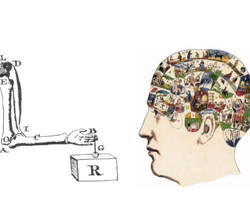 Mind body harmony