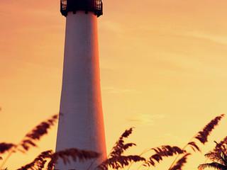 International Investors Should Look To Miami!