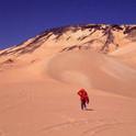 WALKING THE EARTH