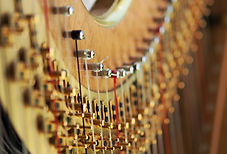 harp-1788187_1920.jpg