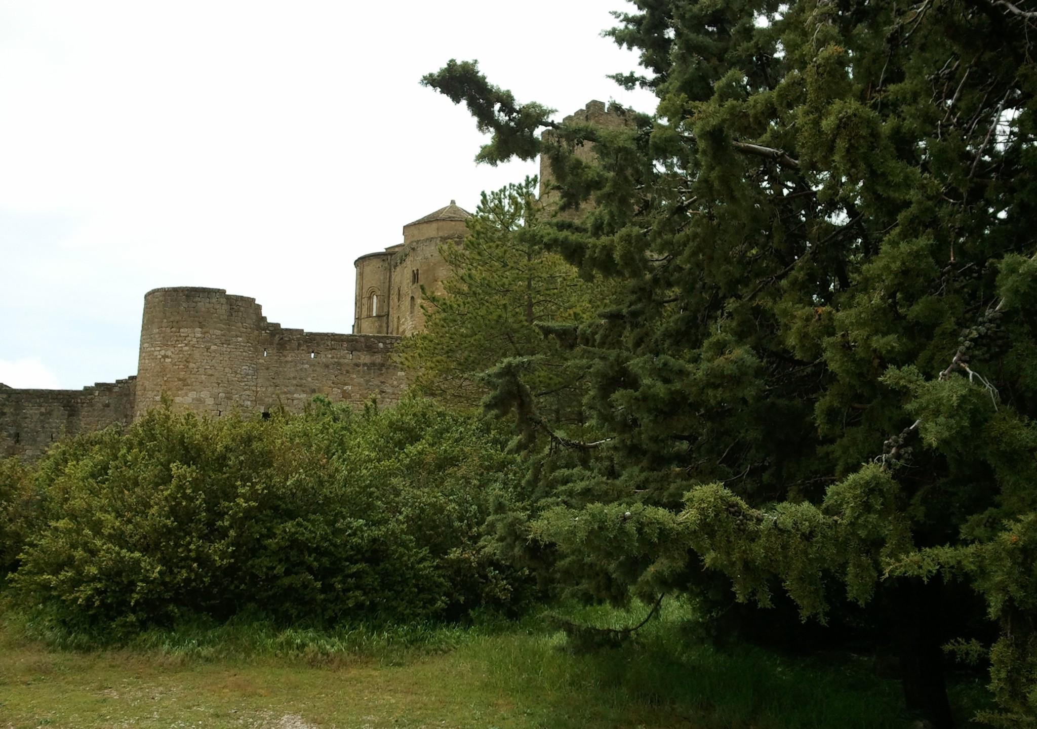 Castillo de Loarre - 155