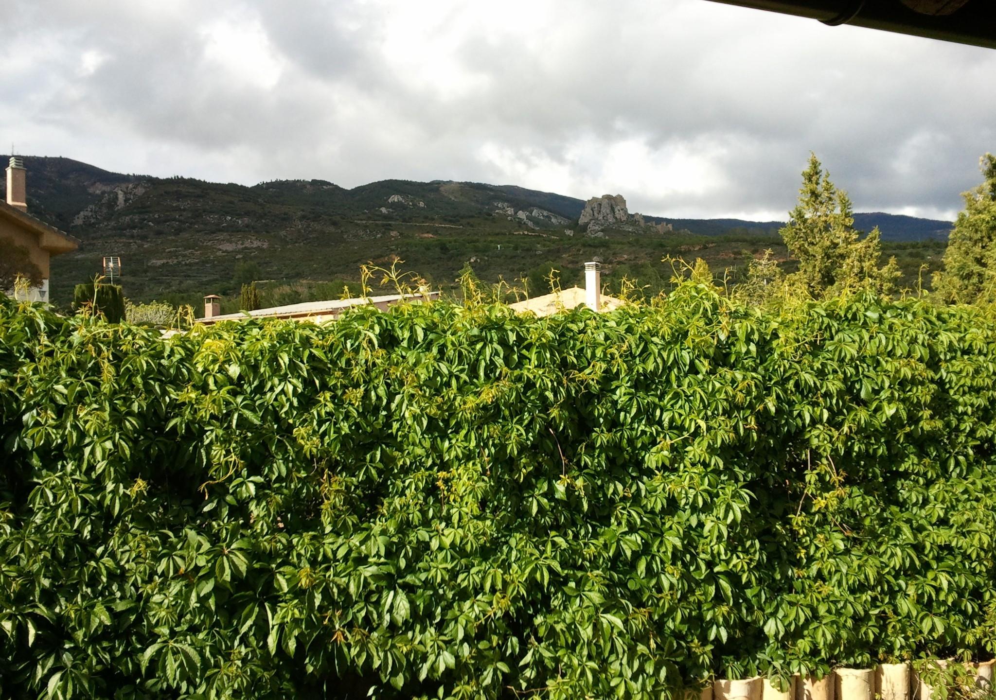 Rincón de Andresé - 08