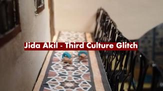 Third Culture Glitch